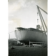 Black and White Photograph in album of 'Vikdal' stern view